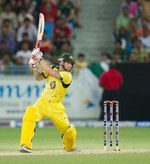 Matthew Wade plays the cut shot